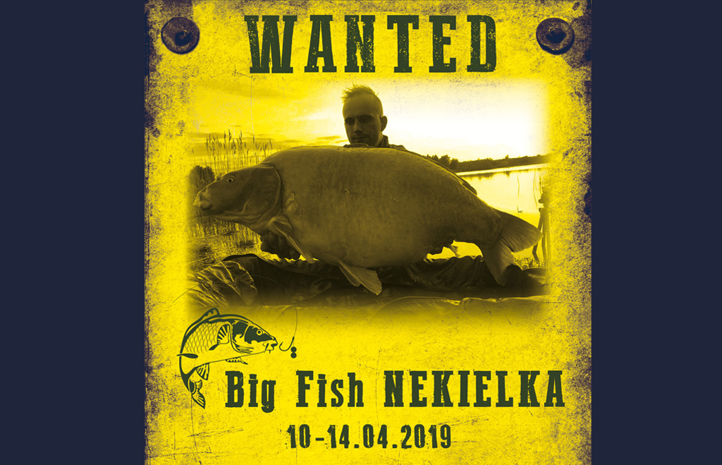 Big Fish Nekielka 10-14 04.2019