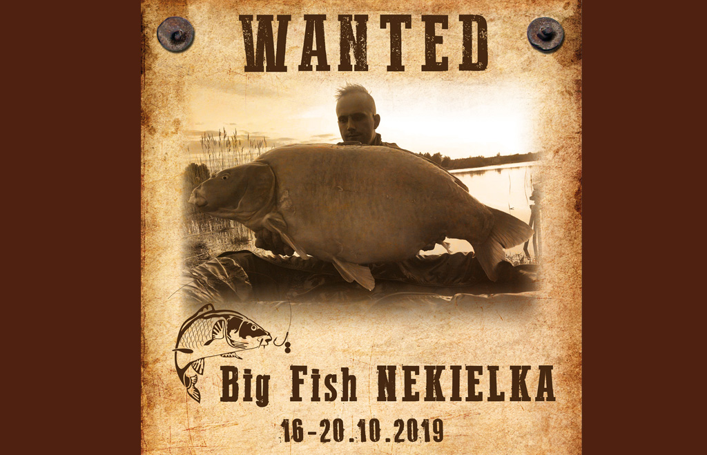 Big Fish Nekielka 16-20 10.2019